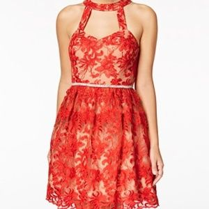 Taupe Red Embroidered Fit & Flare Dress